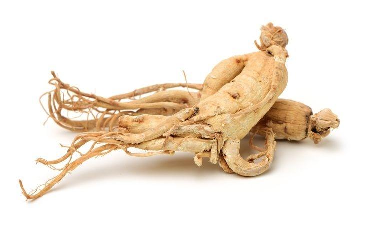 Ženšen pravý kořen